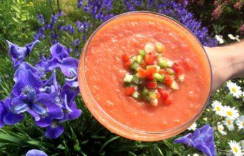 Gazpacho – Sørspansk, kald tomatsuppe