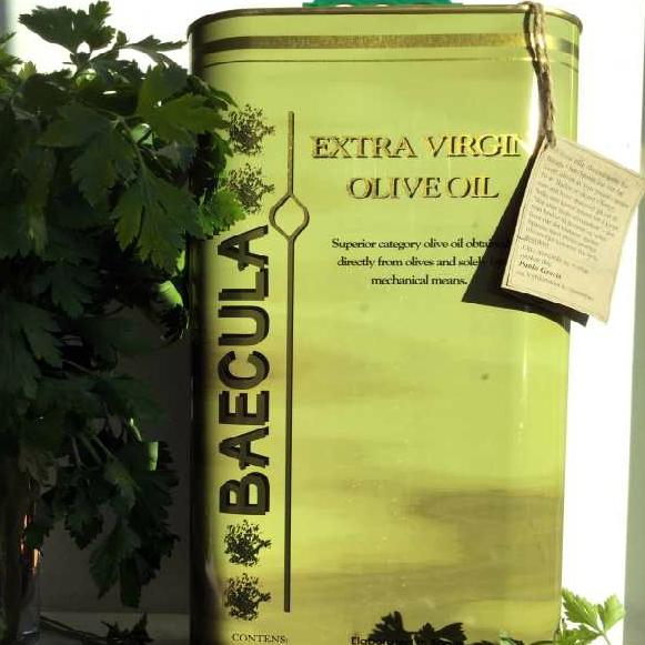 Olivenolje extra virgen Baecula, 5 liter