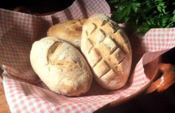 Pane alle erbe – Italienske urtebrød